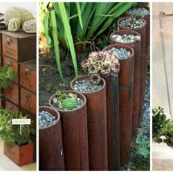 Clever DIY Containers For Planting