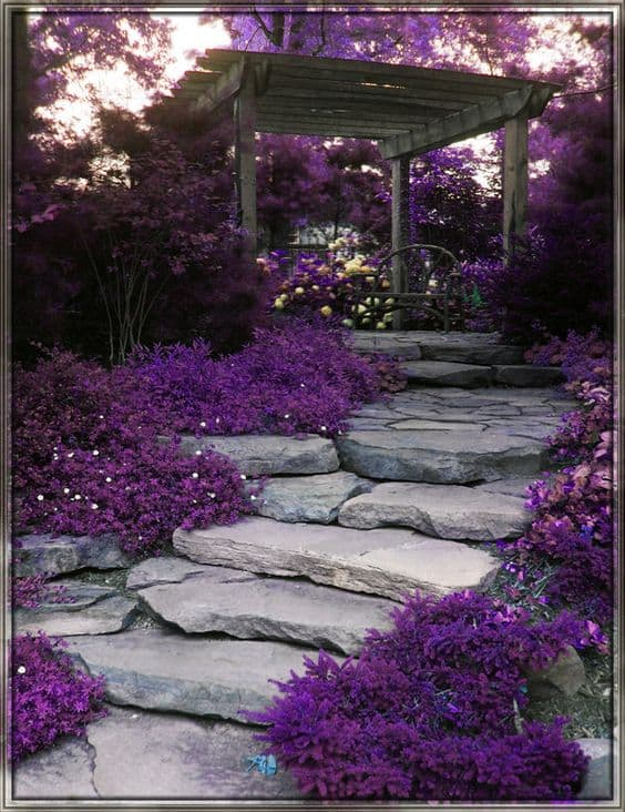 purple-garden-stepping-stones