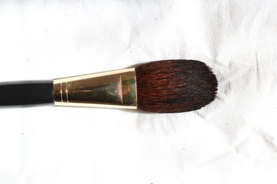 uses for hydrogen peroxide makeup brushes
